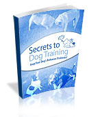 Most Comprehensive Puppy Training Resource