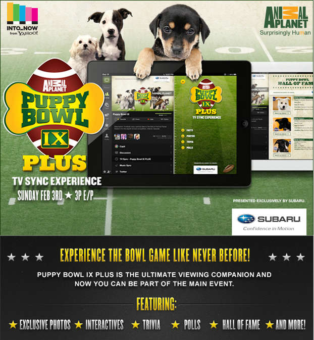 Subaru Puppy Bowl App