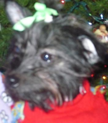This was her at Christmas