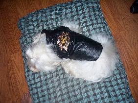 Gordon wearing his Harley vest