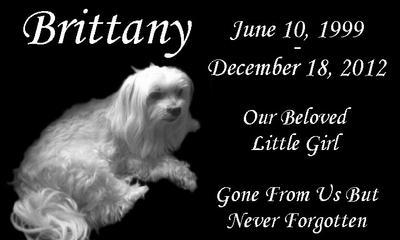 Her pet memorial