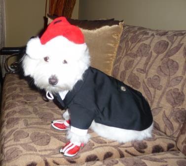 Tux on my Baby $199 Santa hat Princeless
