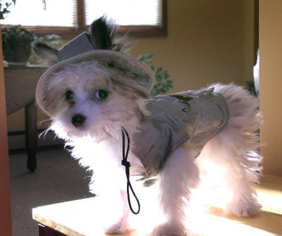 Ready to go fishing