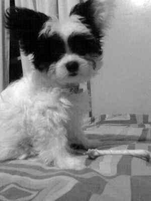 Jazzy <3