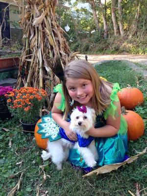 Millie, the puppy & Aubrey.. My 2 Little Peacocks!