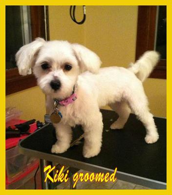 kiki groomed