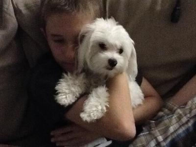 Stewie, the baby:)