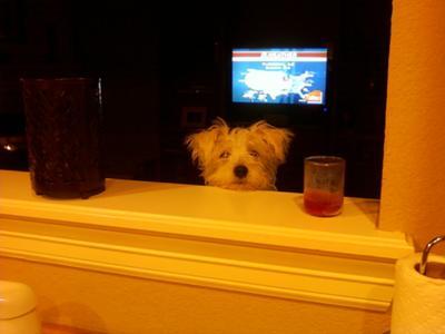 Peeking!!!