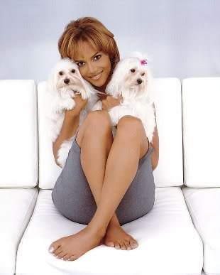 Halle Berry both Maltese dogs