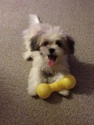 Mindy and one of her toys