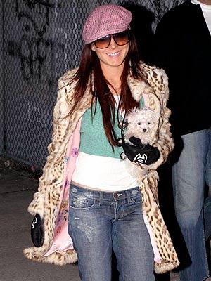 Lindsay Lohan Maltese dog