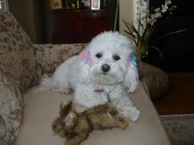 Libby with her toy