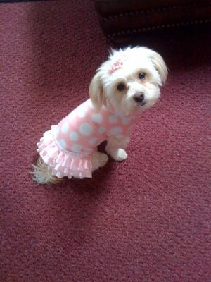 Sweet little Rosie