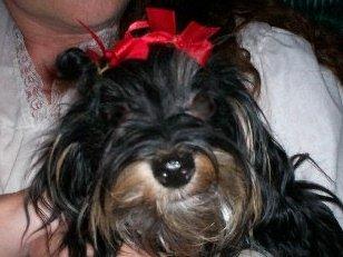 Emmy my Moxie