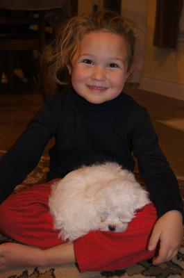 kids love the maltese