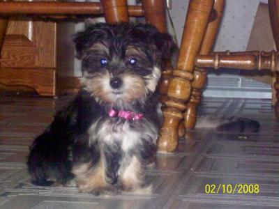Chloe's first picture!!!