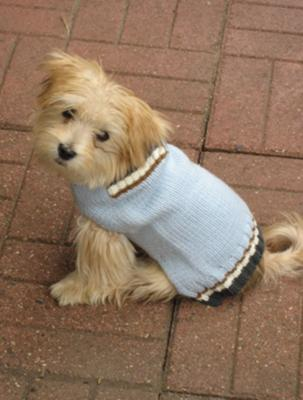My new warm sweater-I look good in blue!